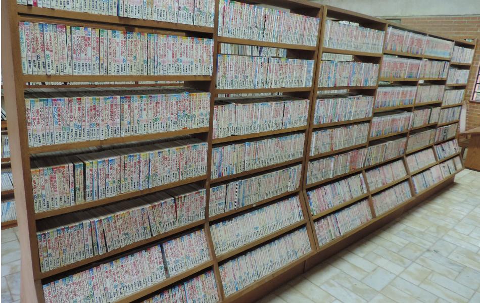 Maior-biblioteca-japonesa-no-Brasil-7