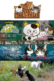 Dayan to Tama to Tobi Neko to: 3-tsu no Neko no Monogatari